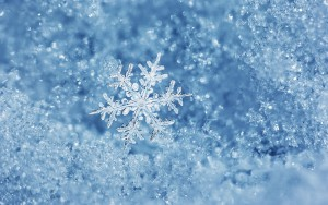 ice-winter-macro-snowflake-720p-wallpaper.jpg